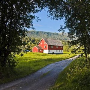 Norwegian Landscapes in July