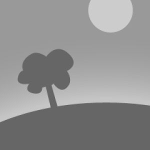 Queen City Agility Club CPE
