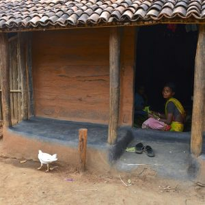 LIFE IN TRIBAL VILLAGES